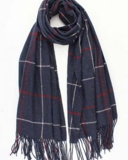 mooie geruite winterse sjaal